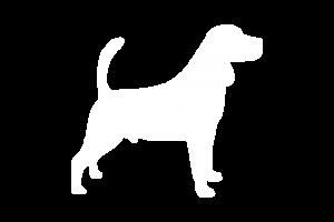 Icon: Koira